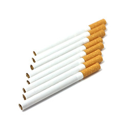 several filter cigarettes on white background
