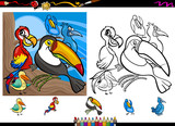 exotic birds cartoon coloring page set