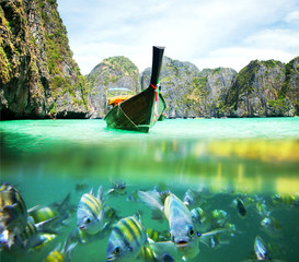 Underwater picture with fish and traditional longtail boat