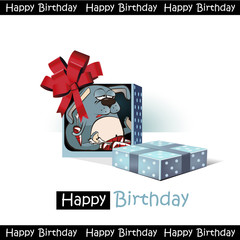 Happy Birthday smile gift rabbit funny