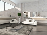 Modern living room interior with cabinet and stone wall
