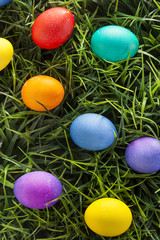 Colorful Dyed Eggs for Easter