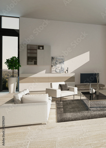 Modern luxury living room interior with nice furniture