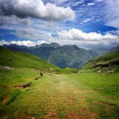vista de los Pirineos desde una pradera verde