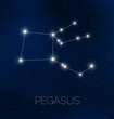 Pegasus constellation in night sky