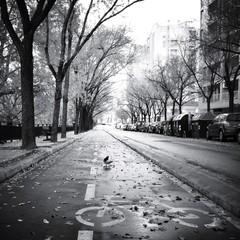 vista de una calle de una ciudad en blanco y negro