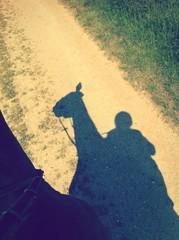 horse rider shadow