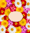 Flower background with a sign. Vector.