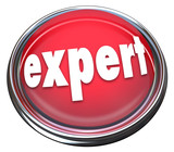 Expert Red Button Light Advertise Expertise Experience Skills