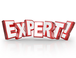 Expert 3D Word Professional Experience Expertise Skills