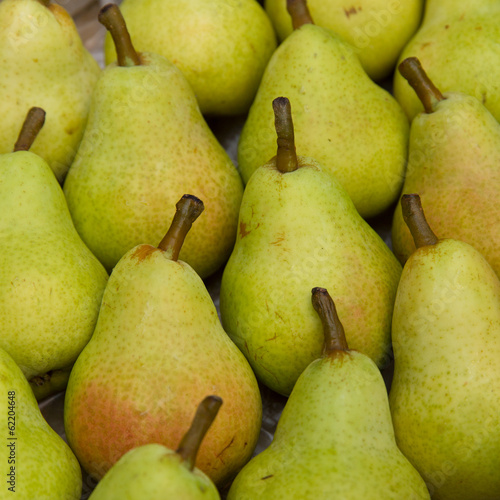 Multiple William pear close up whole