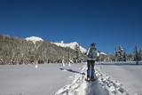 Woman enjoying the view while snowshoeing