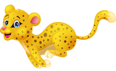 Cute cheetah running