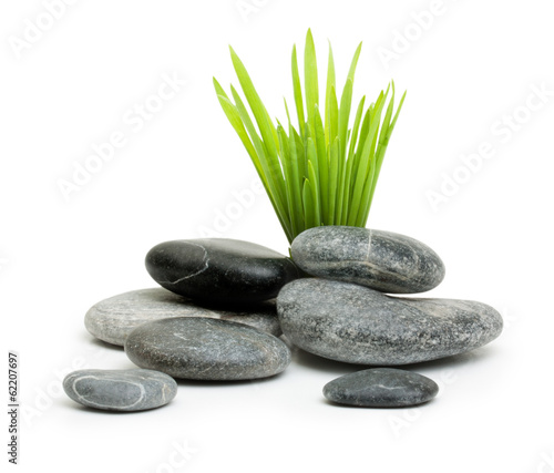 canvas print picture Stones with grass isolated on white background.