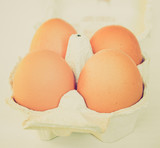 Retro look Eggs picture