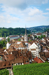 Schaffhausen on the Upper Rhine