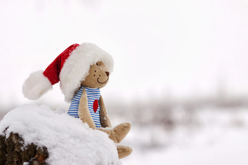 Teddy bear in christmas sitting in the snow