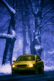 yellow car in wintry forest