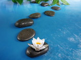 Fototapety zen stones in water