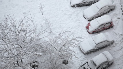 Snow covered cars at the parking lot and snowfall