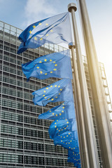 European Union flags in front of the Berlaymont building (Europe