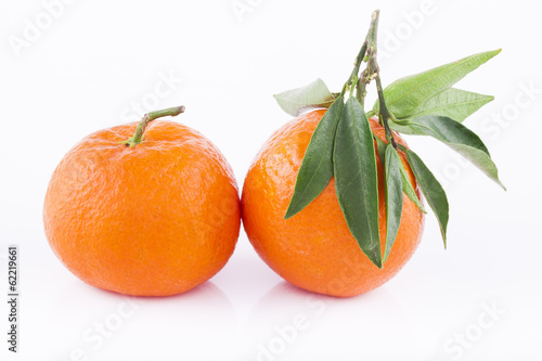 Tangerine on white background