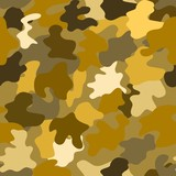 the pattern in military style