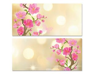 Баннер. Цветение сакуры
