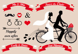 wedding, bride and groom on tandem bicycle, vector set