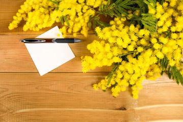 Foglio di carta e mimosa