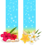 Two summer vertical banners