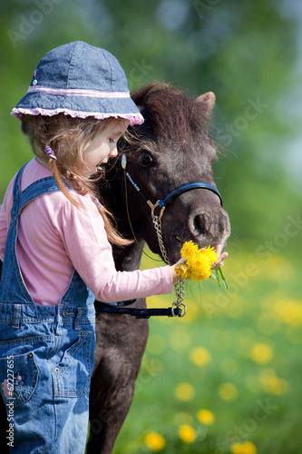 Child feeding a small horse in field