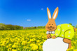 Easter bunny and flower field
