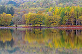 Autumn colurs reflected in a lake
