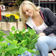 Frau kauft Pflanzen und Blumen auf Markt