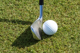 Golf ball and club in grass