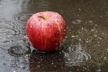 Ein robuster Apfel