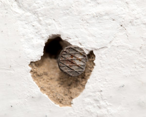 a nail in the wall. macro