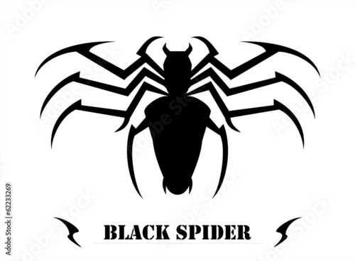 Fototapeta Stylized Black Spider