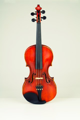 Vintage violin in white background