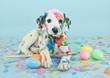 Leinwanddruck Bild - Easter Dalmatain Puppy