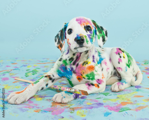 canvas print picture Painted Puppy