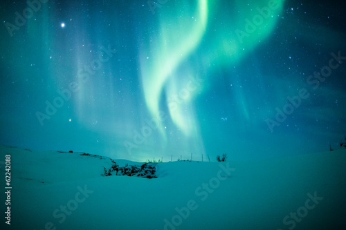 Foto op Plexiglas Scandinavië Northern lights (Aurora borealis) above snow