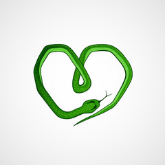 snake in the form of a heart