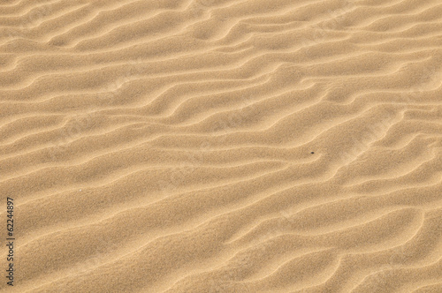 Fotobehang Singapore Sand Dune Desert Texture
