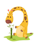 cute giraffe eating bamboo