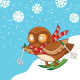 Cute cartoon owl skiing. Merry Christmas card