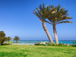 Palm beach in Marsa Alam, tropical paradise. Egypt