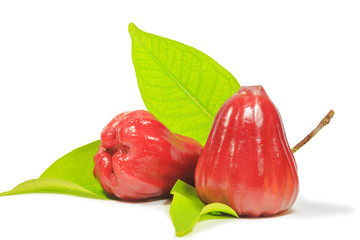 Red rose apple with leaf on white background