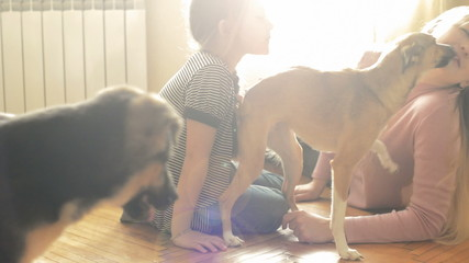 young woman and her daughter playing on the floor with two dogs
